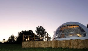 eco glamping domes - luxury glamping dome house - glamping hotel tent - farm glamping (5)